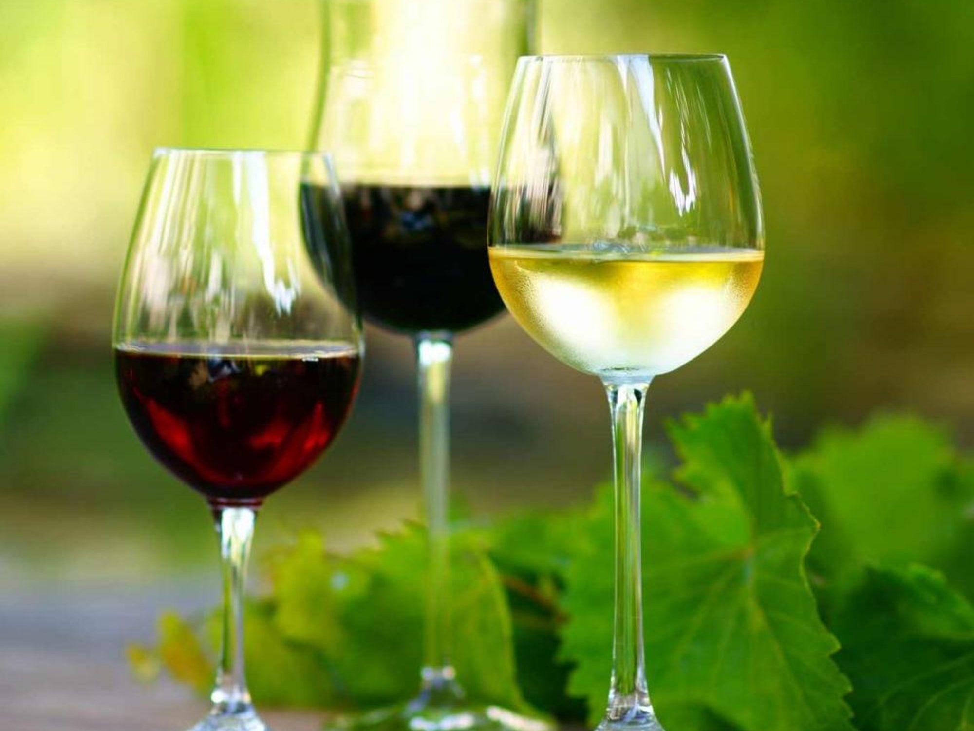 WEIN & DRINKS